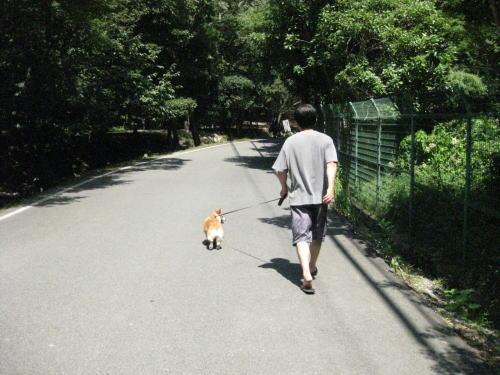 羅漢の里.jpg